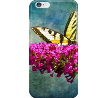 Eastern Yellow Swallowtail iPhone Case/Skin