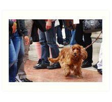 Dog on crowded street Art Print