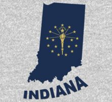 indiana state flag by peteroxcliffe