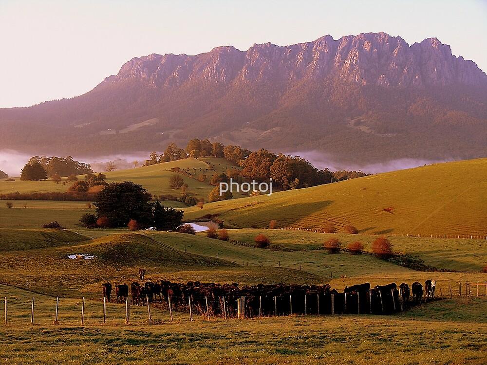 photoj Tas-Shield, Mt Roland Sunrise by photoj