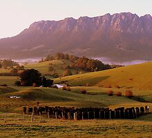 photoj Tas-Shield, Mt Roland Sunrise by photoj