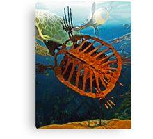 Ancient Turtle  Canvas Print