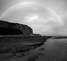 Circling Shack Bay by Joel Gough