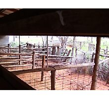 Shearing shed perspective Photographic Print