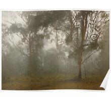 Magical Mist & Wind © Vicki Ferrari Poster