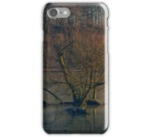 Newmillardam - Wakefield iPhone Case/Skin