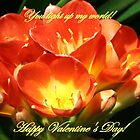 You light up my world, Happy Valentine's Day by Linda Jackson