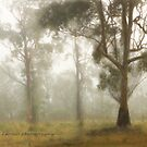 Wilberforce Morning Mist  Vicki Ferrari by Vicki Ferrari