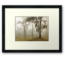 Wilberforce Morning Mist © Vicki Ferrari Framed Print