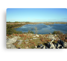 Bureen Landscape Canvas Print