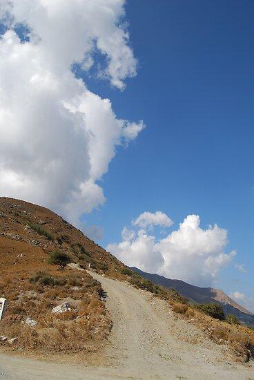 Highland road by Mykola