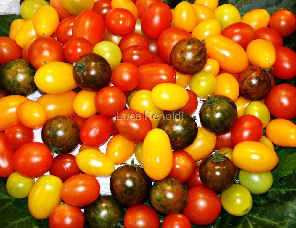 tomatoes by Luca Renoldi