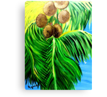 Co-Co-NuTS Canvas Print