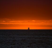 Sailing Sunset by wolfcat