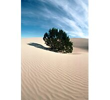 Silence - Death Valley Photographic Print