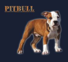 pitbull terrier by hottehue