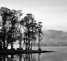 Ullswater Trees by maria burton