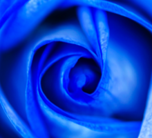 Abstract Macro Blue Rose Sticker