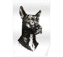 Dog Portrait Poster