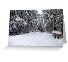 My Snowy Road Greeting Card