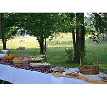 Farm to Table Photographic Print