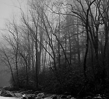 Smoky Mountains by Denis Wagovich