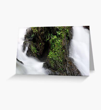 An Island of Green Greeting Card