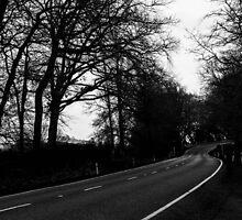 Lost Highway by Taraka26