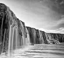 Waterfall Reef by Mieke Boynton