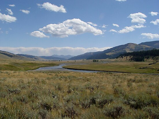Yellowstone River by May Lattanzio
