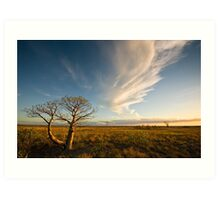 The Sunlit Plains Extended... Art Print