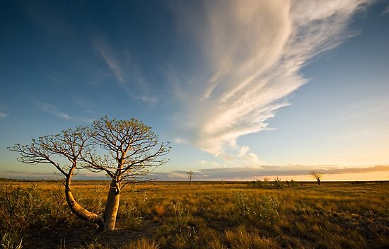 The Sunlit Plains Extended... by Mieke Boynton