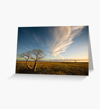 The Sunlit Plains Extended... Greeting Card