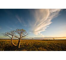 The Sunlit Plains Extended... Photographic Print