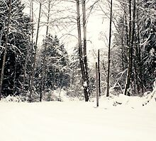 Winter Wonderland by elysekufeldt