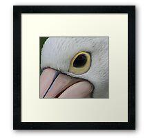 Pelican sees Framed Print