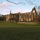 Bolton Priory 3 by WatscapePhoto