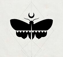 Meditation Moth by Jenna Fullerton