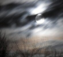 Midnight Blur by addielion