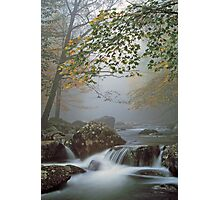 A FOGGY MOUNTAIN STREAM Photographic Print