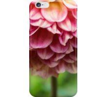 Pink Dahlia Petals iPhone Case/Skin