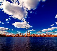 Central Park Reservoir by vinaixa