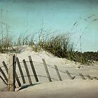 Dunes by Jonicool