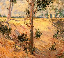 'Trees in a Field on a Sunny Day' by Vincent Van Gogh (Reproduction) by Roz Abellera Art Gallery