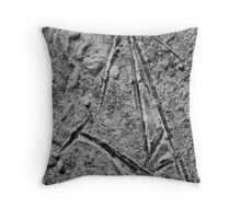 Ice crystals on standing water Throw Pillow