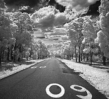 Safe Roads 09 by Annette Blattman