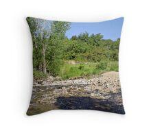 Farmington Stream & Pond Throw Pillow