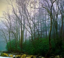 Smoky Mountains (color) by Denis Wagovich