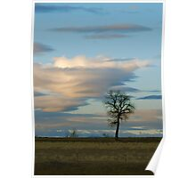 Lenticular Cloud Poster