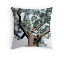 Perspective Part 2 Throw Pillow